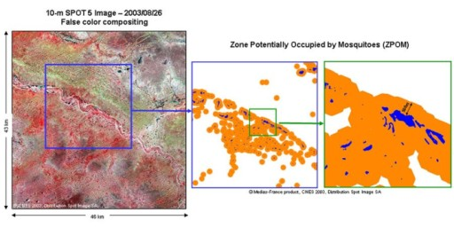 A false-color composite of a 10 m SPOT 5 image (left) and ENVI 4.3 software were used to obtain a new pond index (NDPI). From the NDPI, ponds (in blue) were precisely located (center and right). The 500 m zone potentially occupied by mosquitoes (ZPOM) is shown in orange.